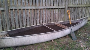 Canoe garden ready to plant: time to garden